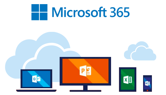 Office365 business web
